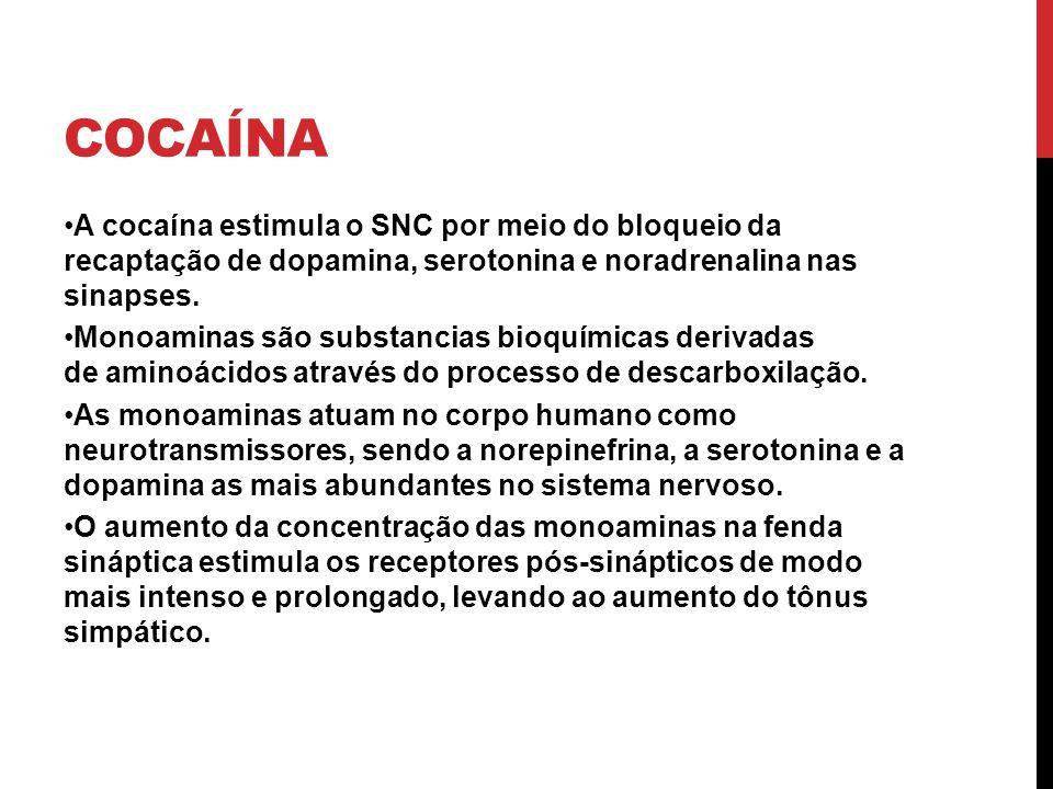 Cocaína A cocaína estimula o SNC por meio do bloqueio da recaptação de dopamina, serotonina e noradrenalina nas sinapses.