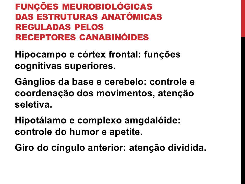 FUNÇÕES MEUROBIOLÓGICAS DAS ESTRUTURAS ANATÔMICAS REGULADAS PELOS RECEPTORES CANABINÓIDES