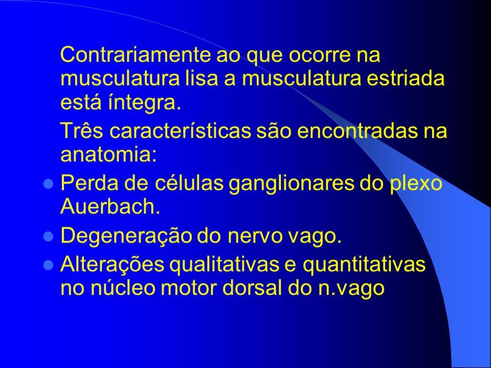 Contrariamente ao que ocorre na musculatura lisa a musculatura estriada está íntegra.