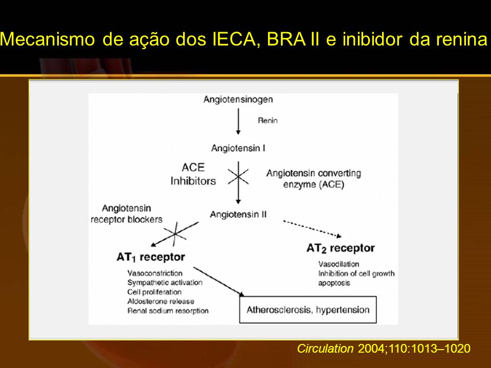 Mecanismo de ação dos IECA, BRA II e inibidor da renina