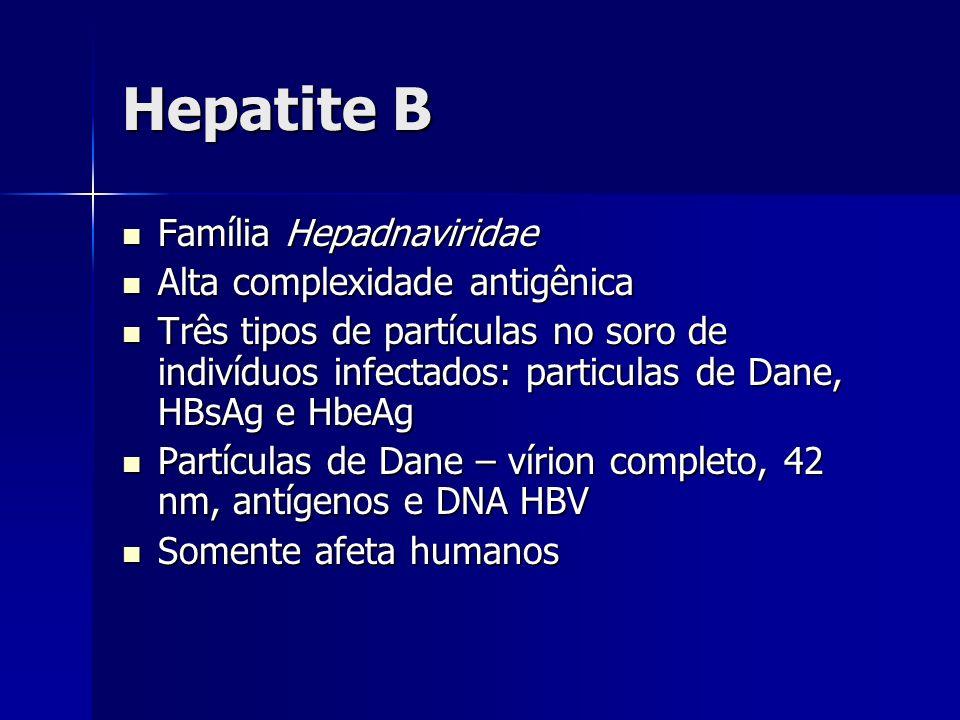 Hepatite B Família Hepadnaviridae Alta complexidade antigênica