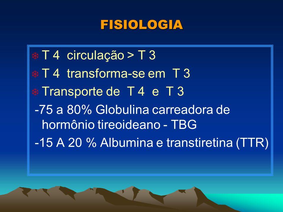 FISIOLOGIA T 4 circulação > T 3. T 4 transforma-se em T 3. Transporte de T 4 e T 3.