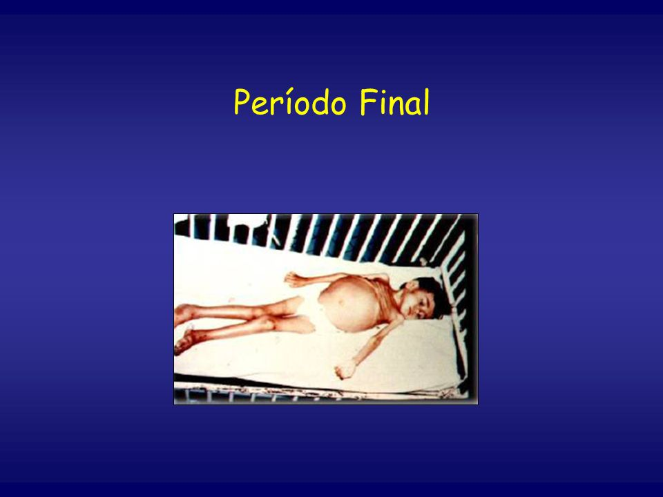 Período Final