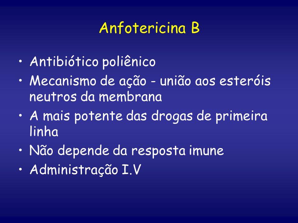 Anfotericina B Antibiótico poliênico