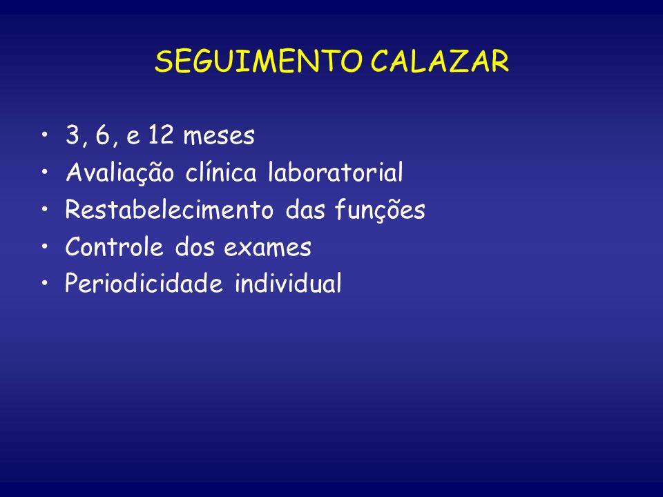 SEGUIMENTO CALAZAR 3, 6, e 12 meses Avaliação clínica laboratorial
