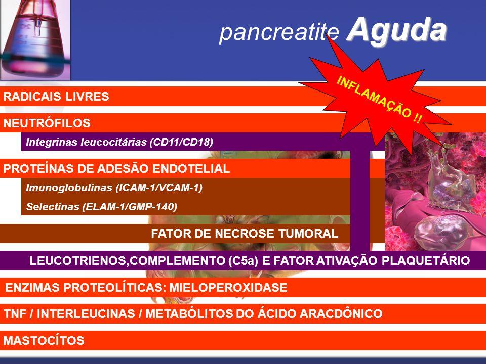 pancreatite Aguda INFLAMAÇÃO !! RADICAIS LIVRES NEUTRÓFILOS