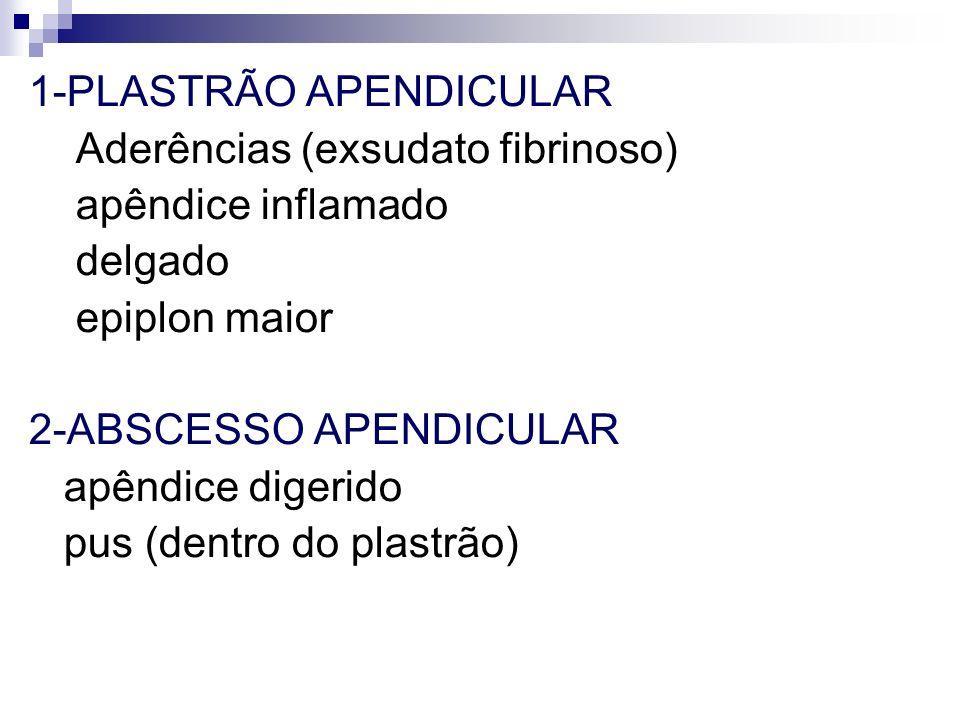 1-PLASTRÃO APENDICULAR