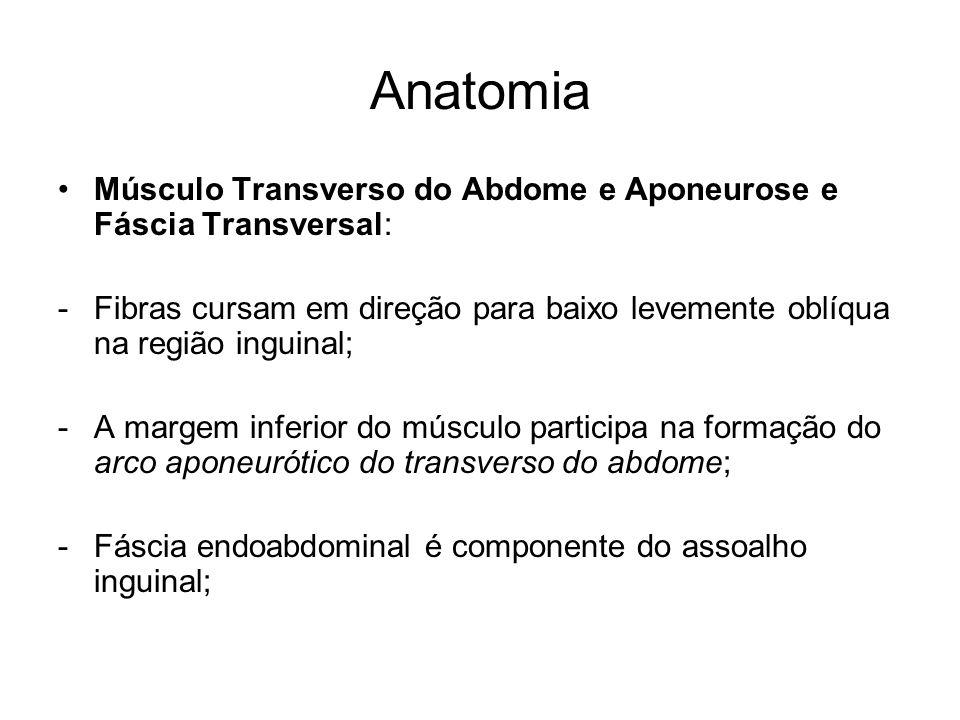 Anatomia Músculo Transverso do Abdome e Aponeurose e Fáscia Transversal: Fibras cursam em direção para baixo levemente oblíqua na região inguinal;