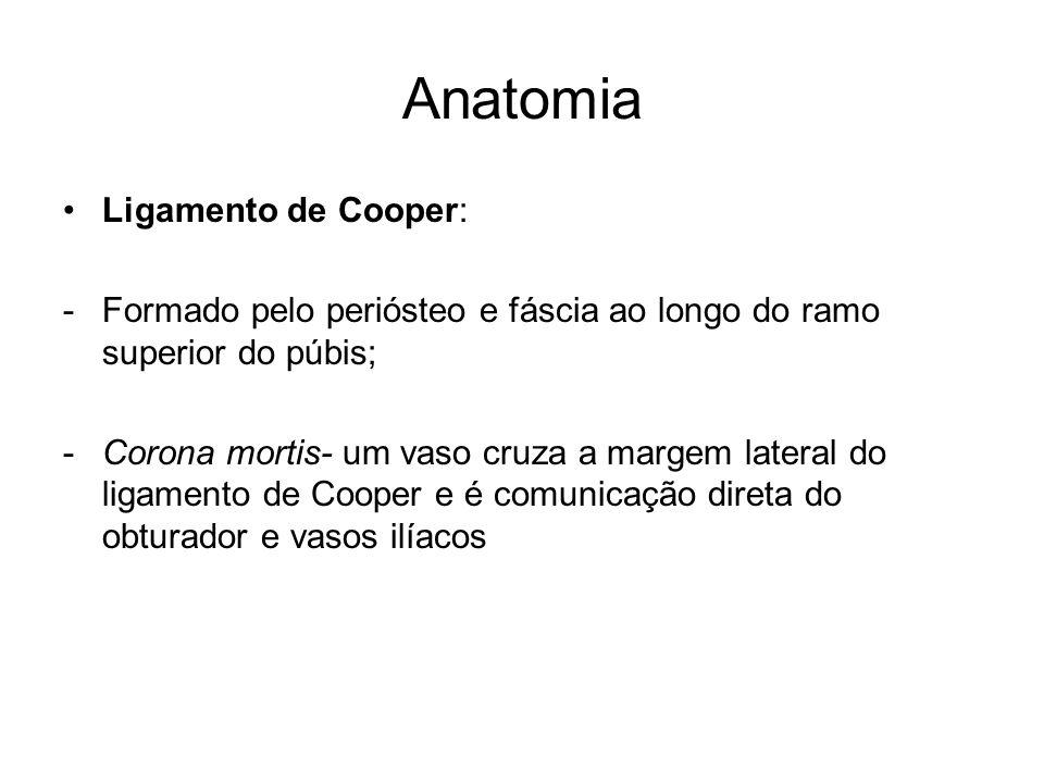 Anatomia Ligamento de Cooper: