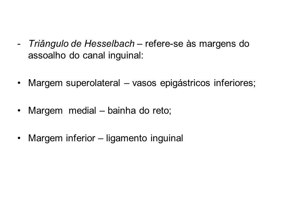 Triângulo de Hesselbach – refere-se às margens do assoalho do canal inguinal: