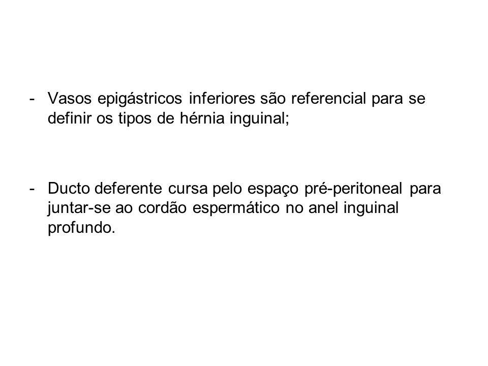 Vasos epigástricos inferiores são referencial para se definir os tipos de hérnia inguinal;