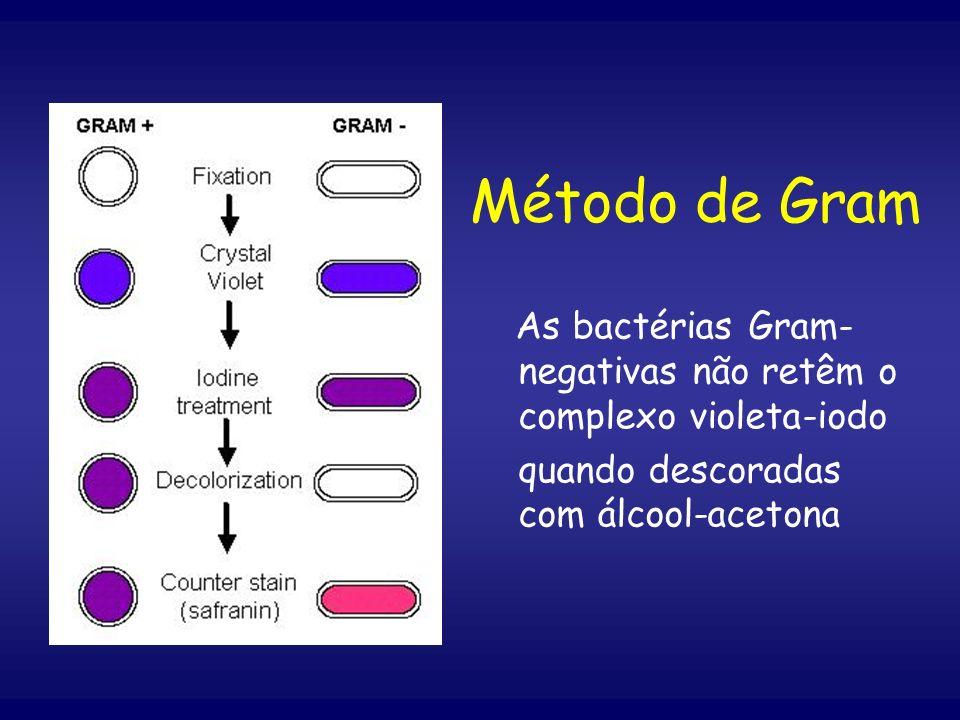 Método de Gram As bactérias Gram-negativas não retêm o complexo violeta-iodo.