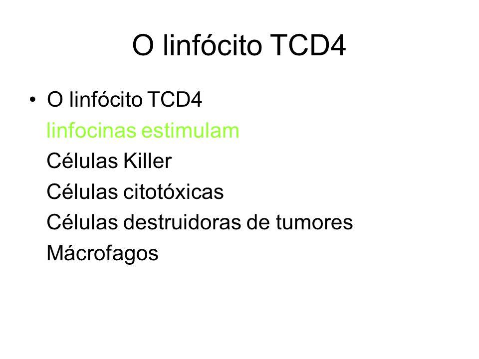O linfócito TCD4 O linfócito TCD4 linfocinas estimulam Células Killer