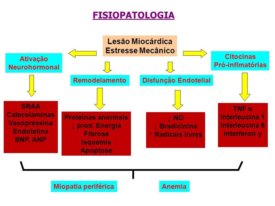 FISIOPATOLOGIA Lesão Miocárdica Estresse Mecânico Citocinas