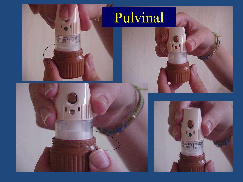 Pulvinal