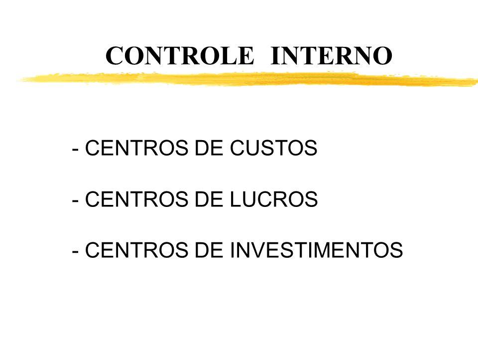 CONTROLE INTERNO CENTROS DE CUSTOS CENTROS DE LUCROS