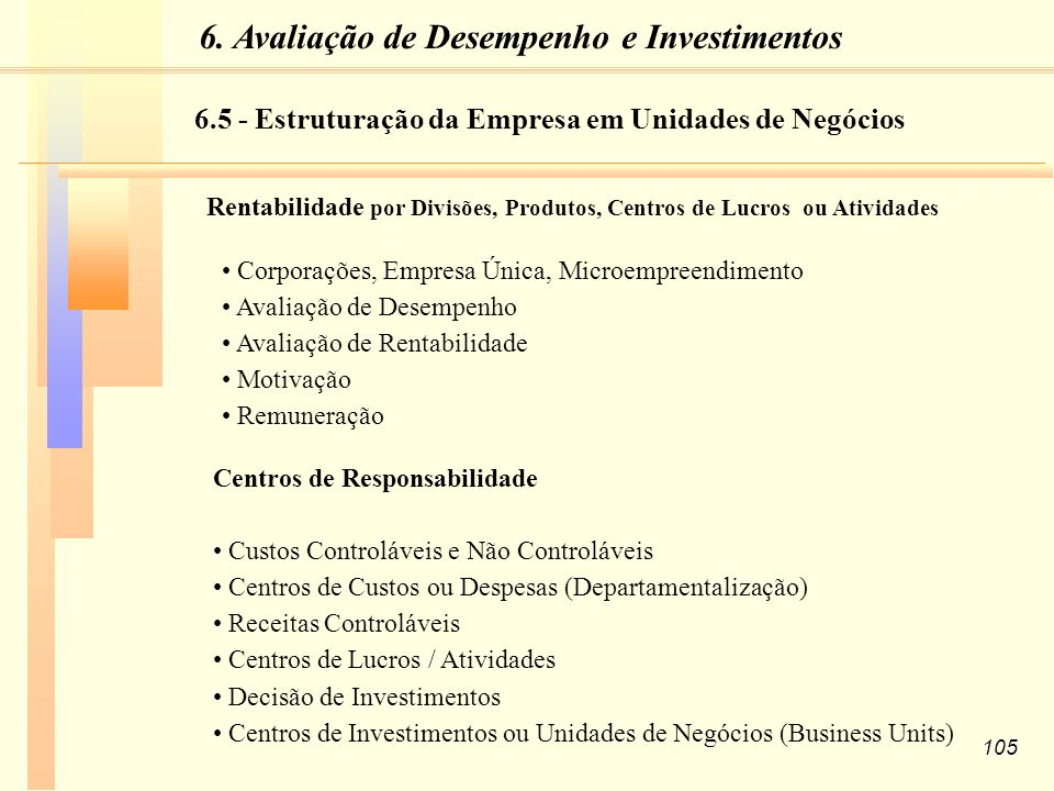 6.5 - Estruturação da Empresa em Unidades de Negócios