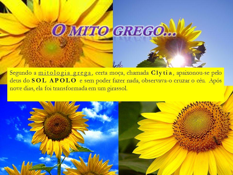 O mito grego...