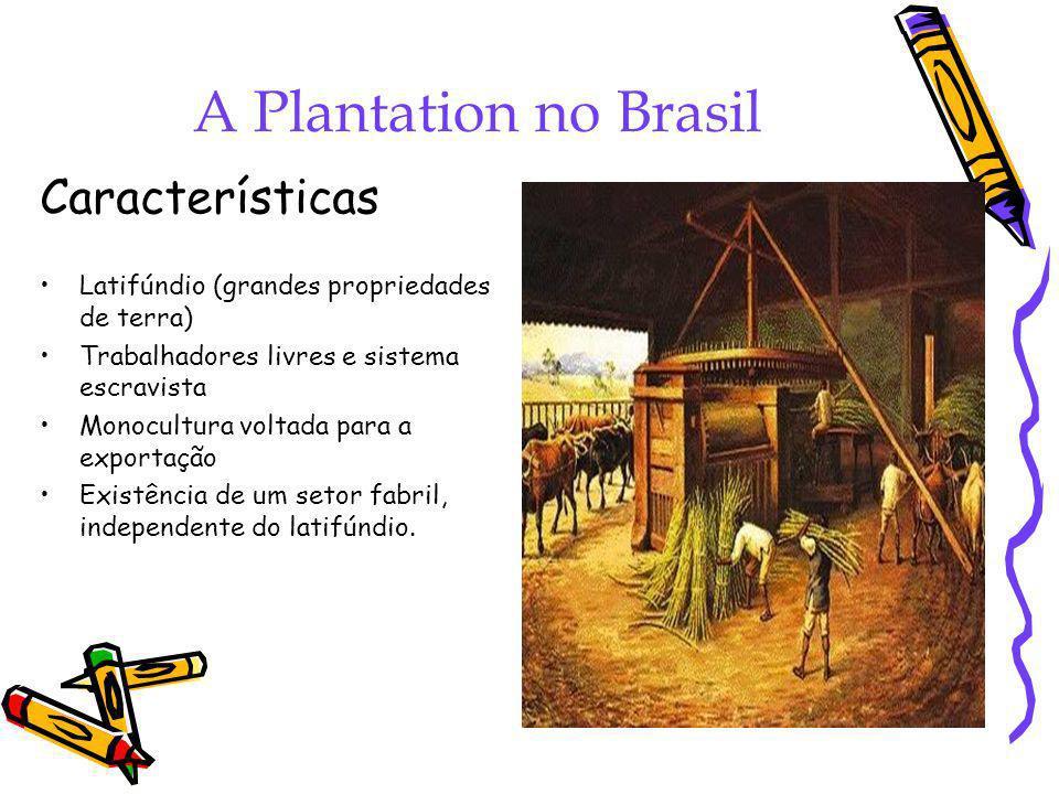 A Plantation no Brasil Características