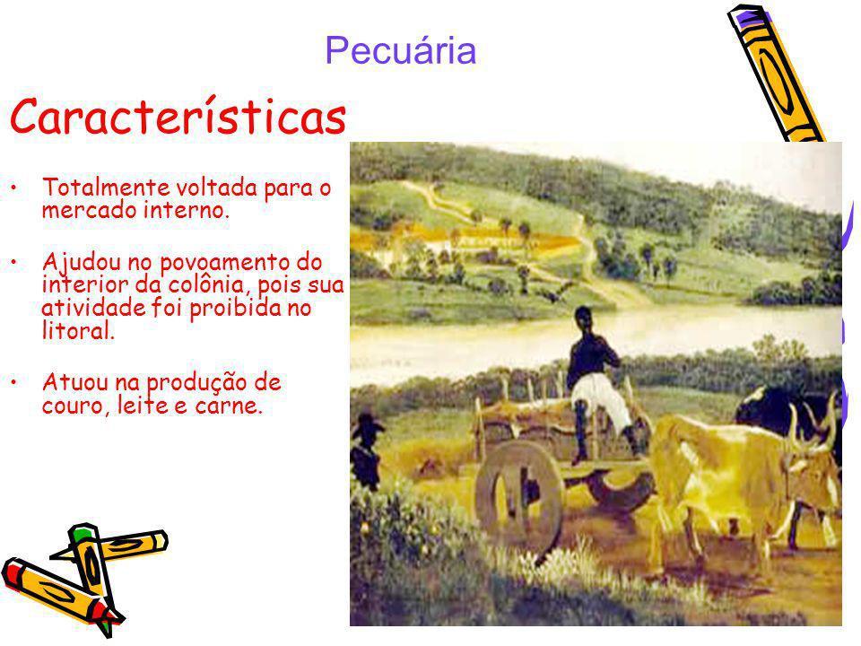 Características Pecuária Totalmente voltada para o mercado interno.