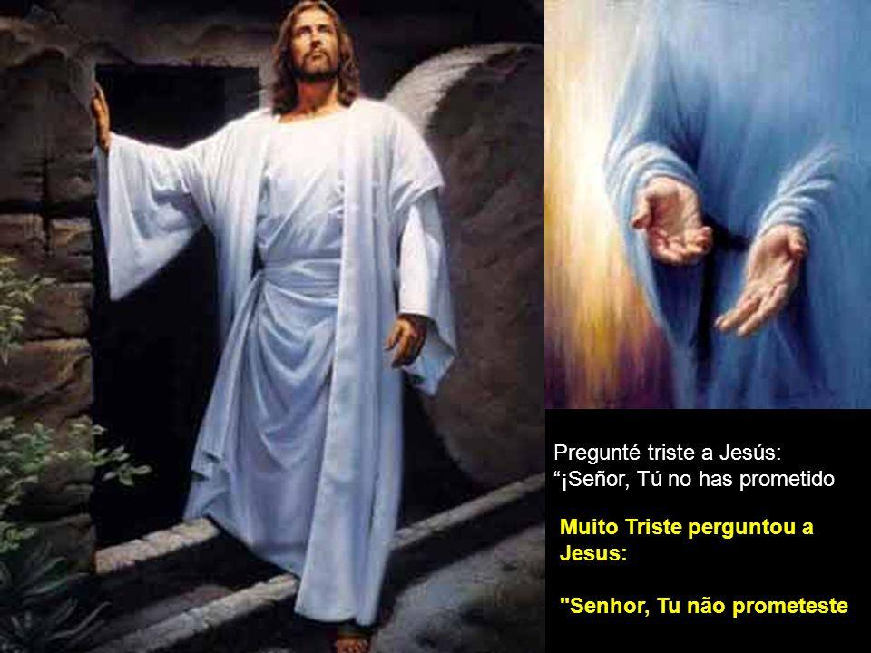 Pregunté triste a Jesús: ¡Señor, Tú no has prometido.
