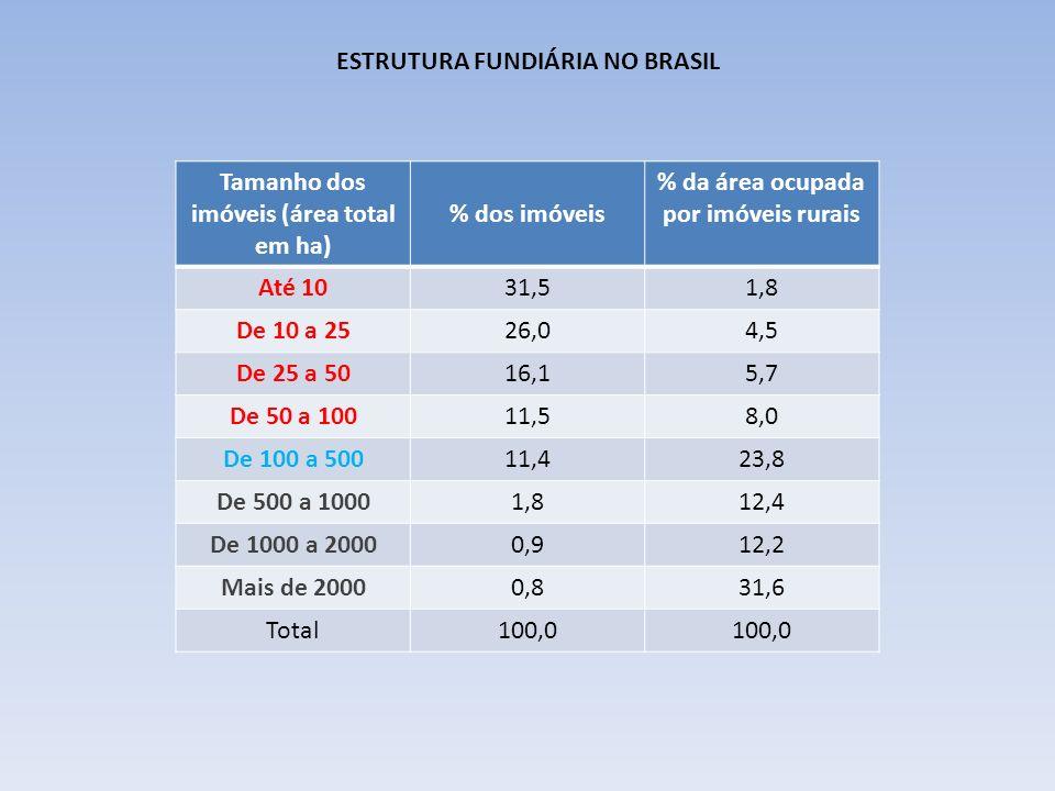 ESTRUTURA FUNDIÁRIA NO BRASIL Tamanho dos imóveis (área total em ha)