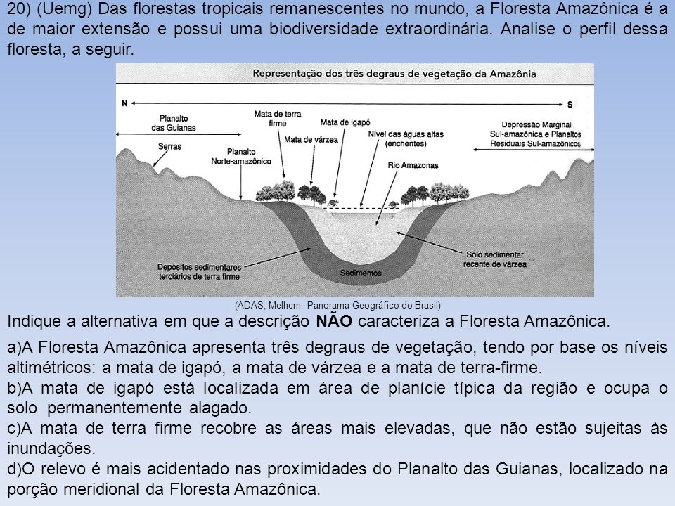 (ADAS, Melhem. Panorama Geográfico do Brasil)