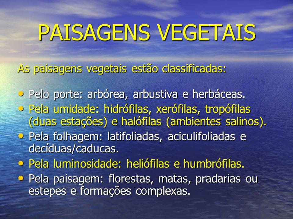PAISAGENS VEGETAIS As paisagens vegetais estão classificadas: