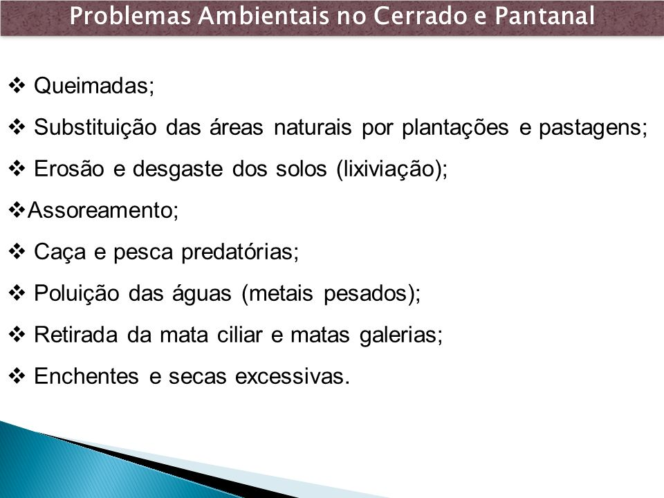 Problemas Ambientais no Cerrado e Pantanal