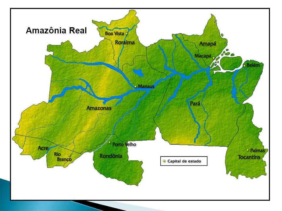 Amazônia Real