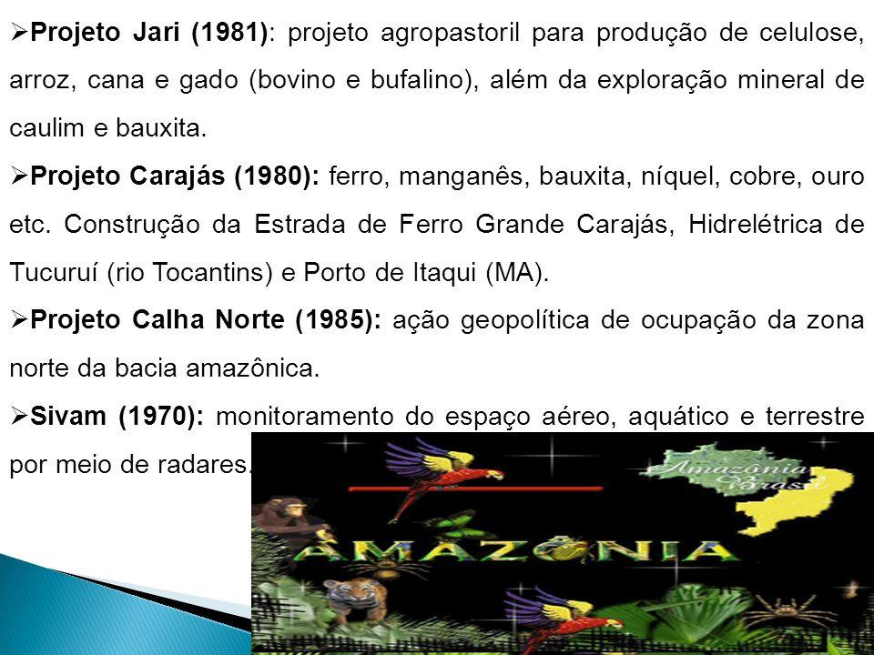 Projeto Jari (1981): projeto agropastoril para produção de celulose, arroz, cana e gado (bovino e bufalino), além da exploração mineral de caulim e bauxita.