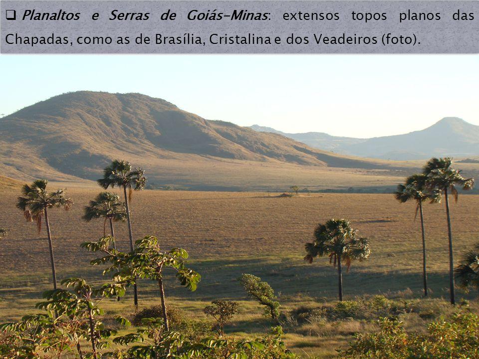 Planaltos e Serras de Goiás-Minas: extensos topos planos das Chapadas, como as de Brasília, Cristalina e dos Veadeiros (foto).