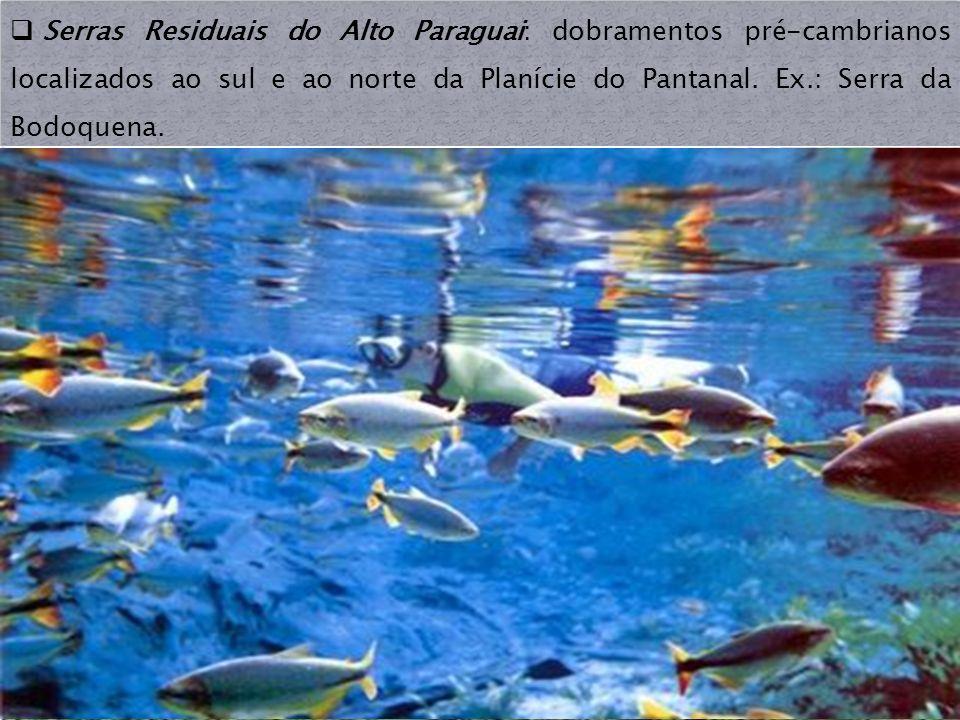 Serras Residuais do Alto Paraguai: dobramentos pré-cambrianos localizados ao sul e ao norte da Planície do Pantanal.