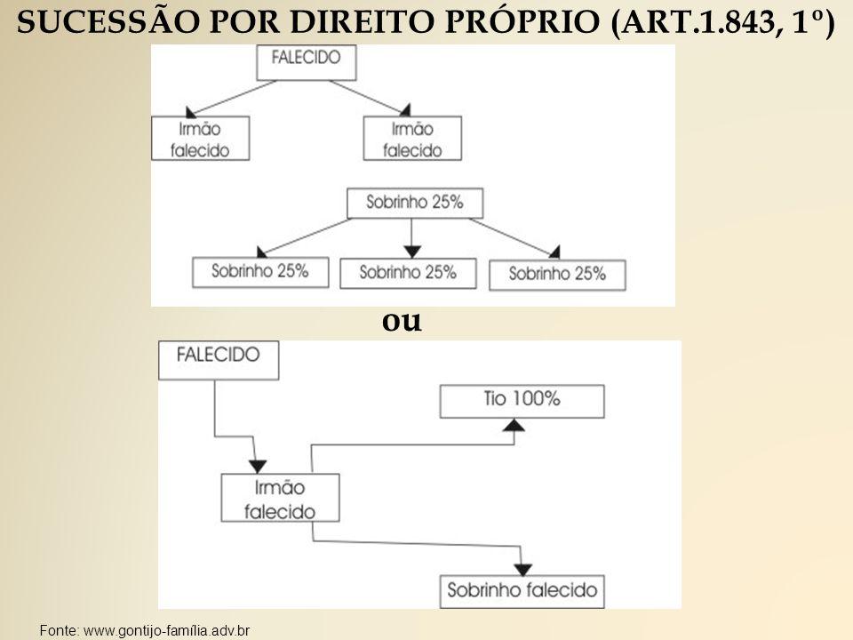 SUCESSÃO POR DIREITO PRÓPRIO (ART.1.843, 1º)