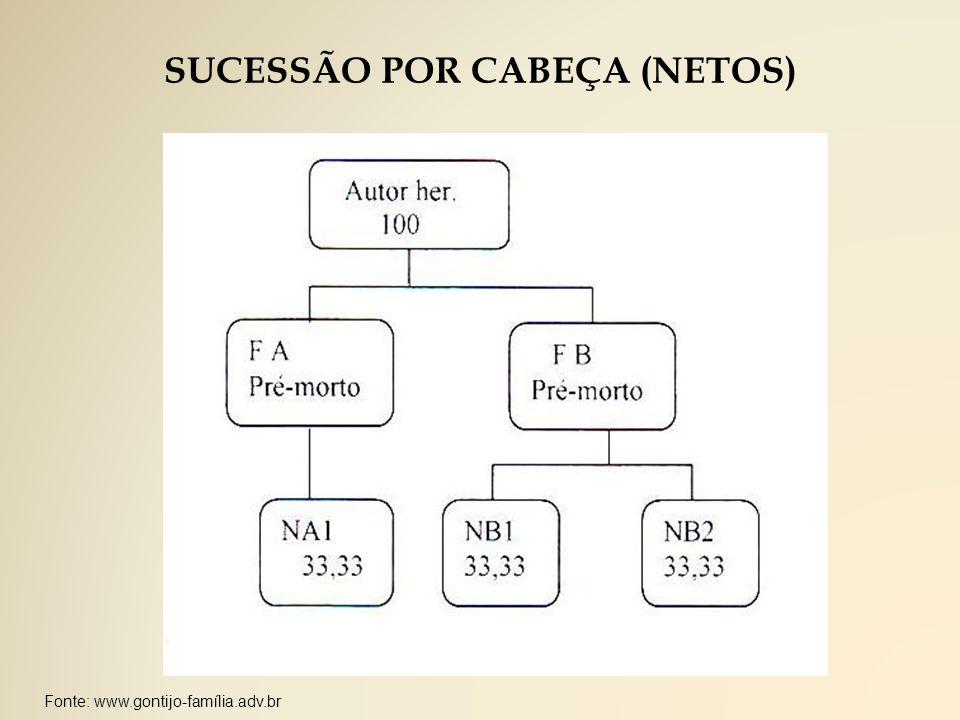 SUCESSÃO POR CABEÇA (NETOS)