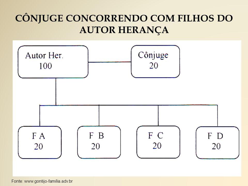 CÔNJUGE CONCORRENDO COM FILHOS DO AUTOR HERANÇA