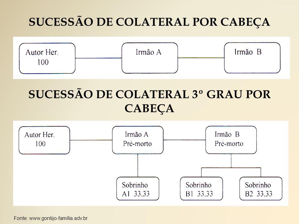 SUCESSÃO DE COLATERAL POR CABEÇA