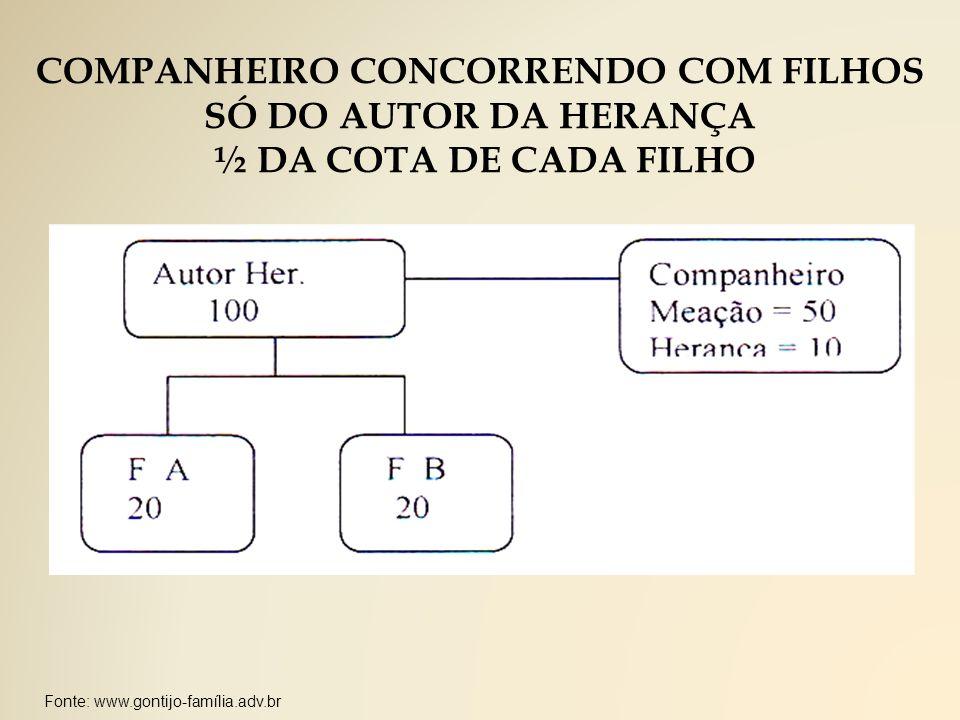 COMPANHEIRO CONCORRENDO COM FILHOS SÓ DO AUTOR DA HERANÇA