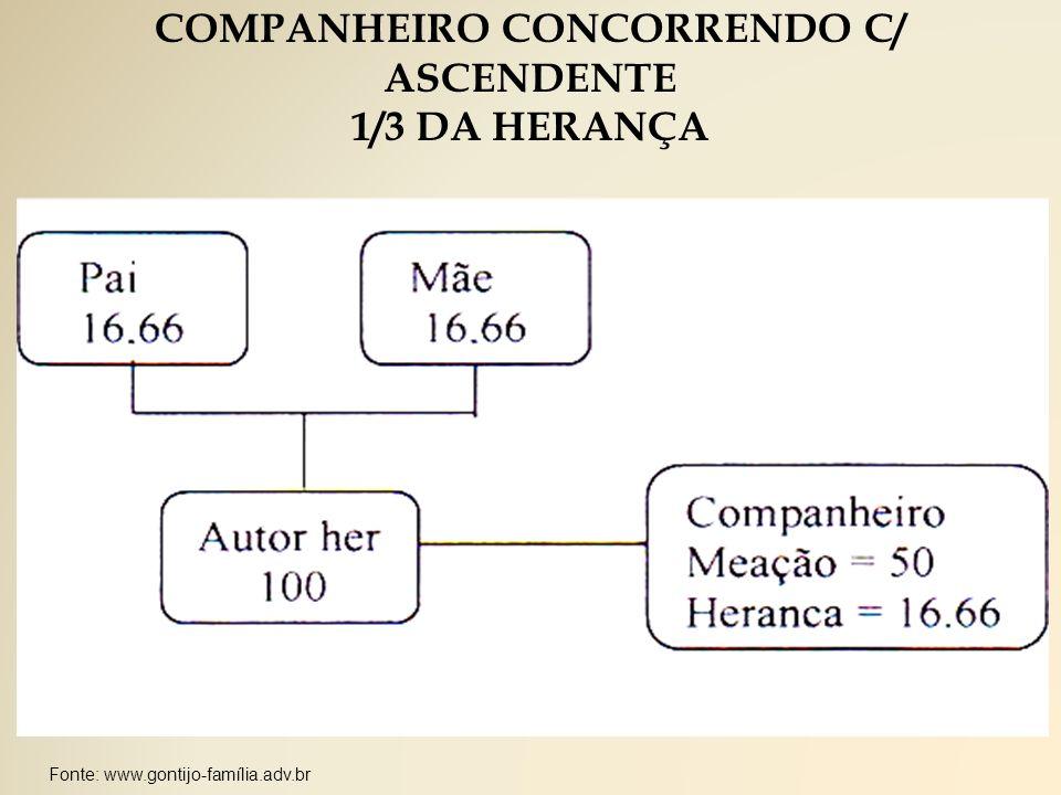 COMPANHEIRO CONCORRENDO C/ ASCENDENTE