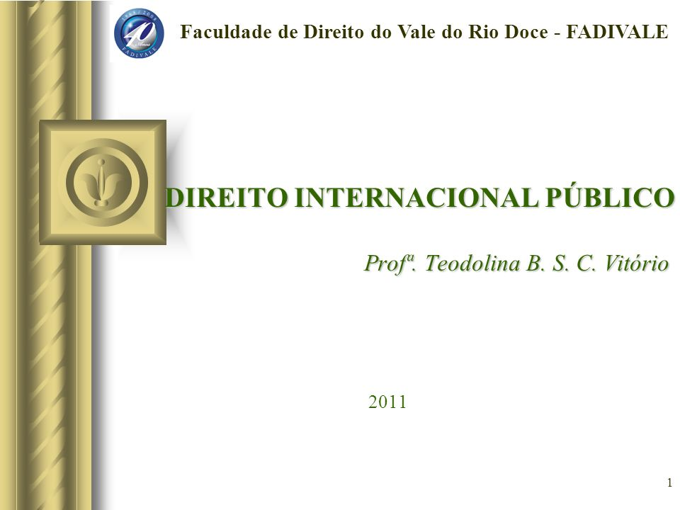 DIREITO INTERNACIONAL PÚBLICO Profª. Teodolina B. S. C. Vitório 2011