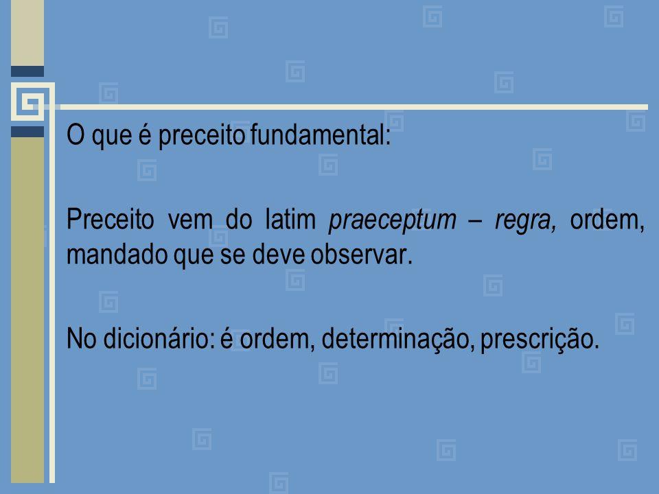 O que é preceito fundamental: Preceito vem do latim praeceptum – regra, ordem, mandado que se deve observar.