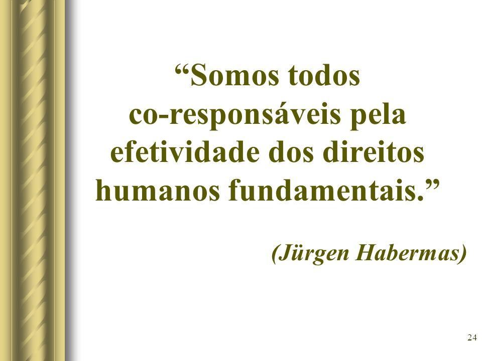 co-responsáveis pela efetividade dos direitos humanos fundamentais.