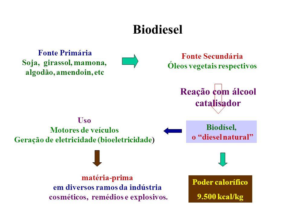 Biodiesel Reação com álcool catalisador Fonte Primária