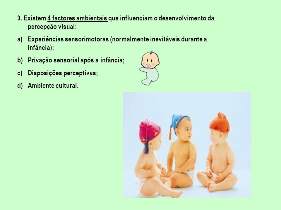 3. Existem 4 factores ambientais que influenciam o desenvolvimento da percepção visual: