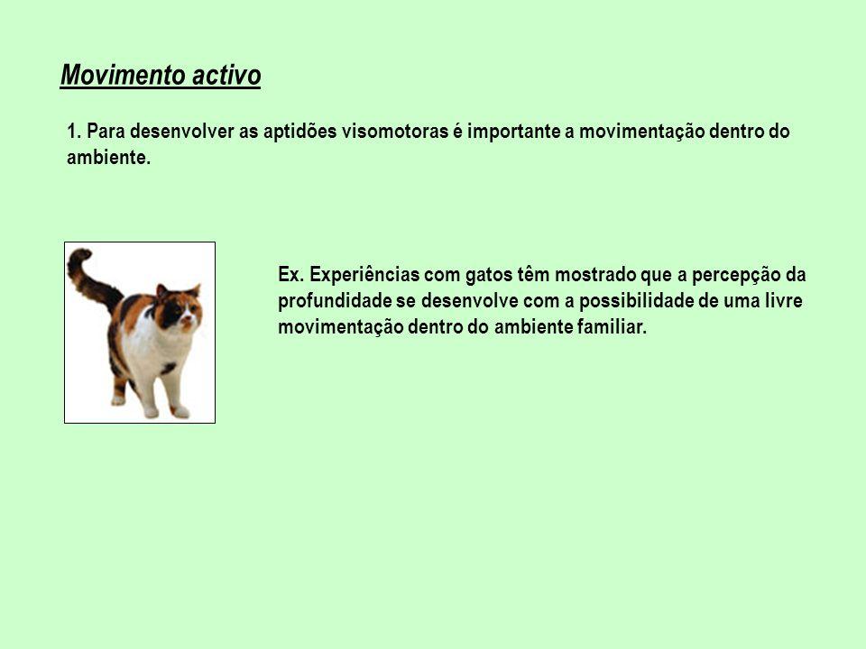 Movimento activo 1. Para desenvolver as aptidões visomotoras é importante a movimentação dentro do ambiente.