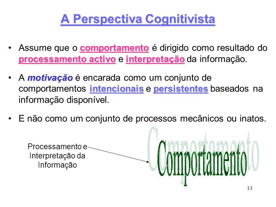 A Perspectiva Cognitivista