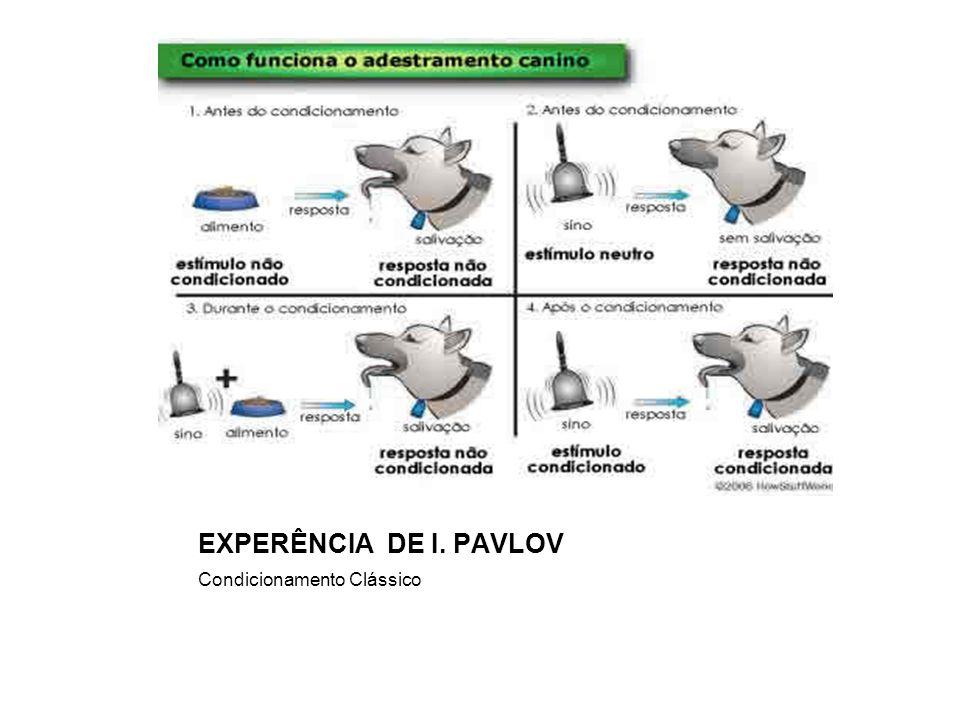EXPERÊNCIA DE I. PAVLOV Condicionamento Clássico