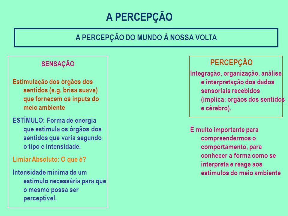 A PERCEPÇÃO DO MUNDO À NOSSA VOLTA