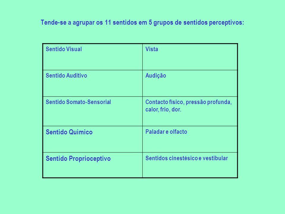 Tende-se a agrupar os 11 sentidos em 5 grupos de sentidos perceptivos: