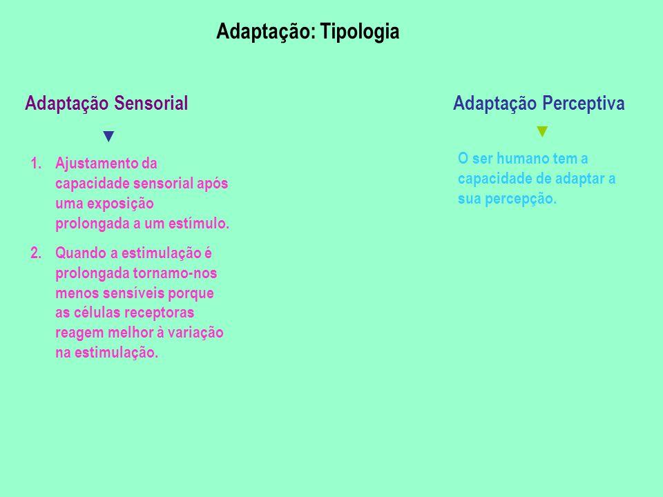 Adaptação: Tipologia Adaptação Sensorial Adaptação Perceptiva ▼ ▼